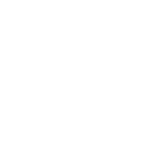 Professional Pirates